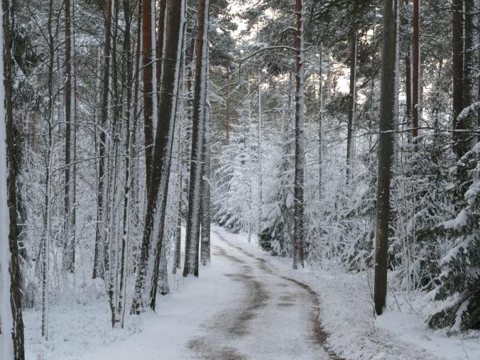 Talvitie.JPG